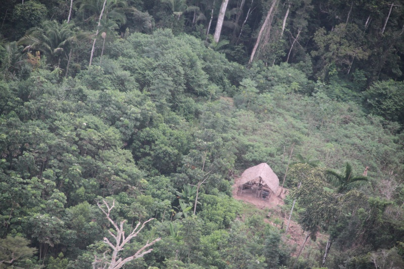 Vista aérea da aldeia Kuntamanã
